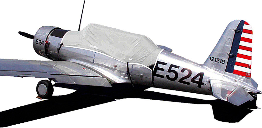 BT-13 Canopy Cover
