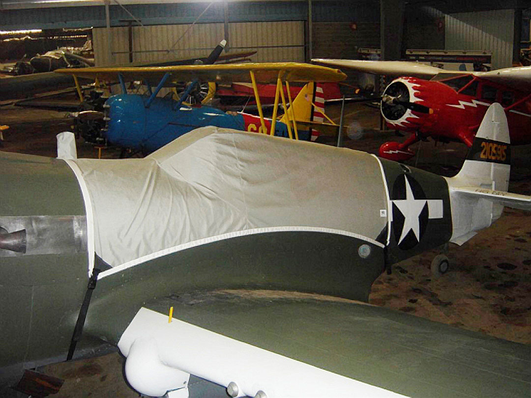 P40 Canopy Cover