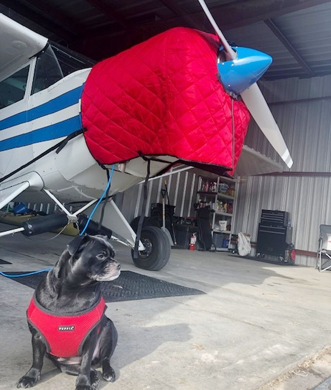 Piper PA-12 Insulated Hangar Blanket